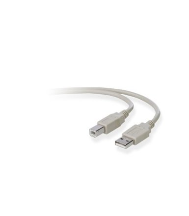 Belkin USB A/B Device Cable A/B DSTP